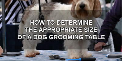 How to Determine the Appropriate Size of a Dog Grooming Table