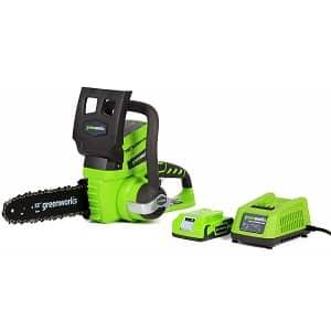 Greenworks 10-Inch 24V
