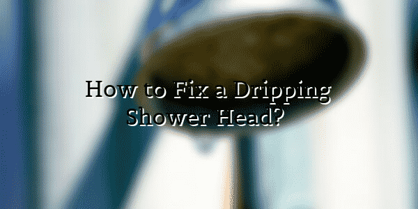 How to Fix a Dripping Shower Head